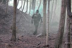 woodland1a